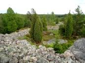Västerby_fornborg